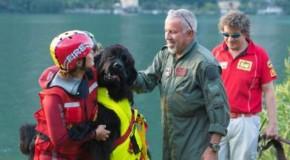 I cani da salvataggio: un documentario sugli eroi a 4 zampe in onda stasera