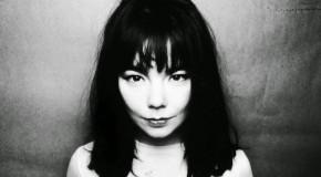 Festivalbar Amarcord: Björk, il soffio magico dell'Islanda