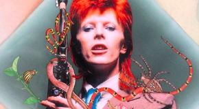 Social radar: l'arte dei collage per i mille volti di Bowie